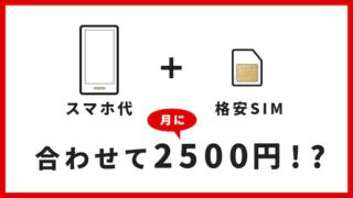 スマホ代と格安SIMを合わせても、月に2500円で使える。